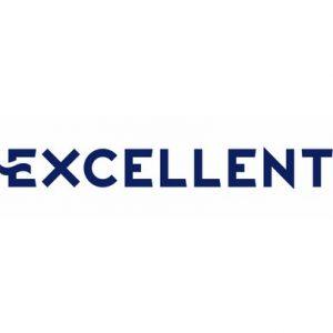 excellent_logo (Kopiowanie)